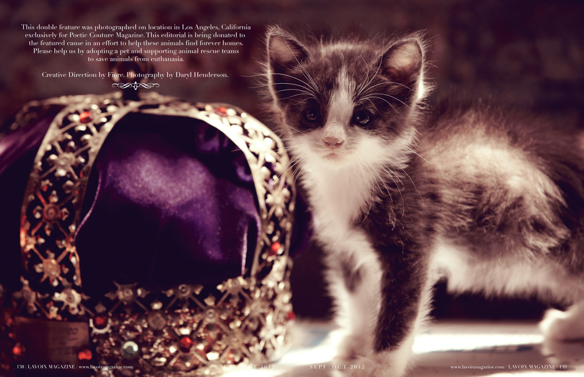 Poetic-Couture-SEPT-OCT-Animal-Rescue-009